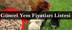 Güncel Tavuk Yemi Fiyatları 2020 Listesi (Et, Yumurta, Civciv)